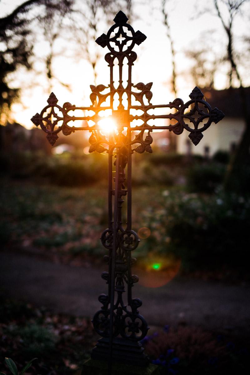Ein Kreuz auf dem Bonner Friedhof im Gegenlicht