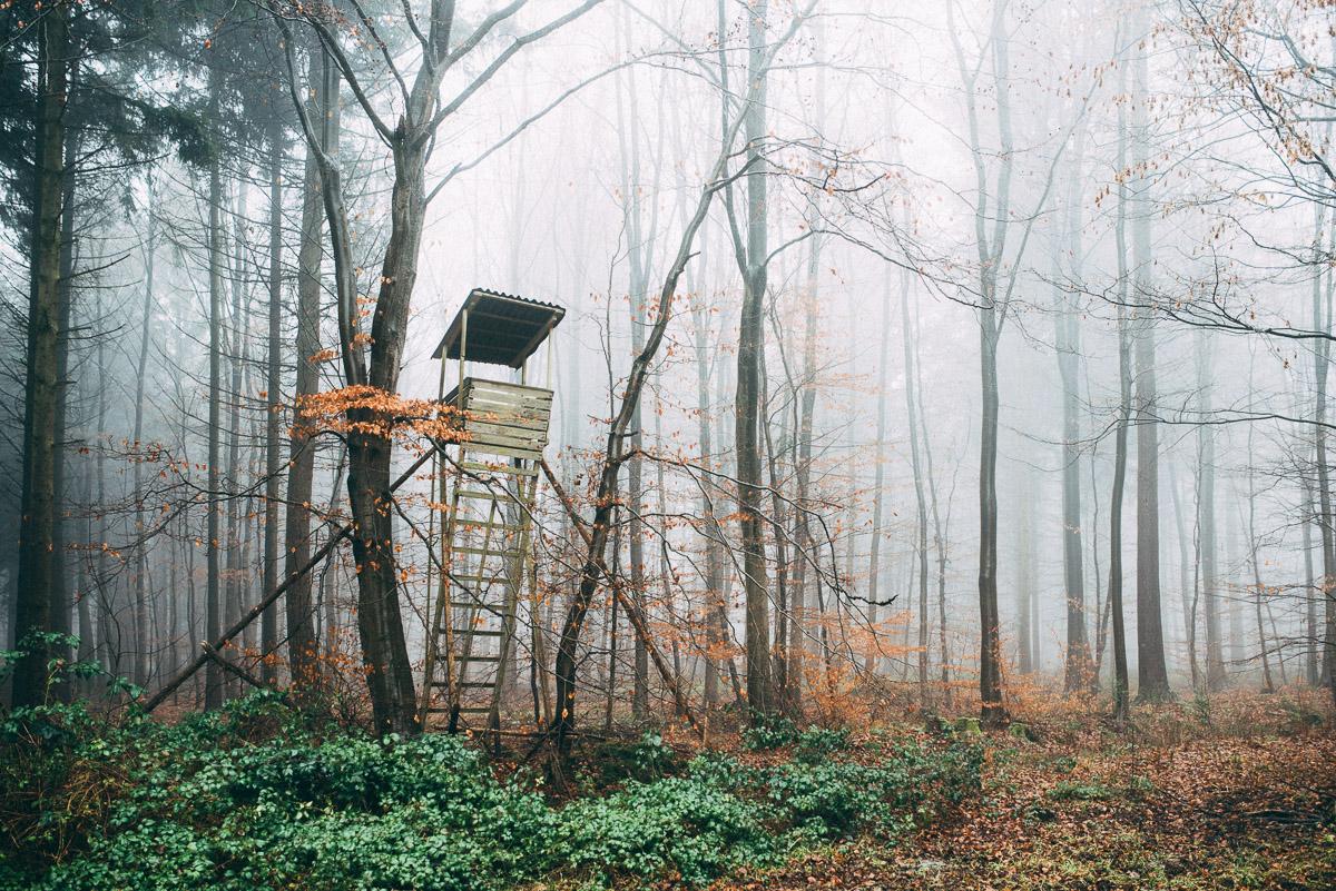 Hochstand im Nebel